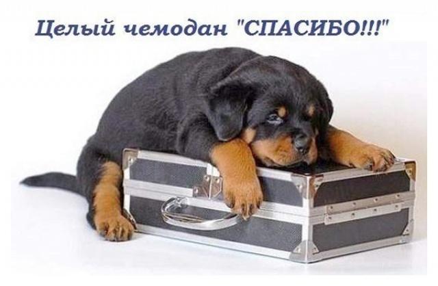 http://f3.mystatic.ru/J8oezNDjTi.jpg